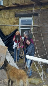 Cob helpers