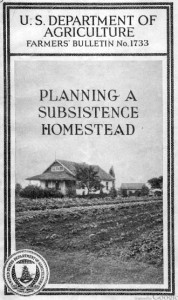 Planning_a_subsistence_homestead_Cover